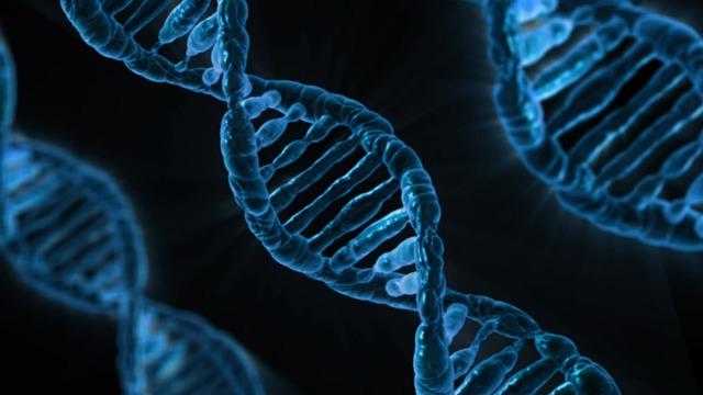 Quand un test d'ADN peut révéler notre infidélité…