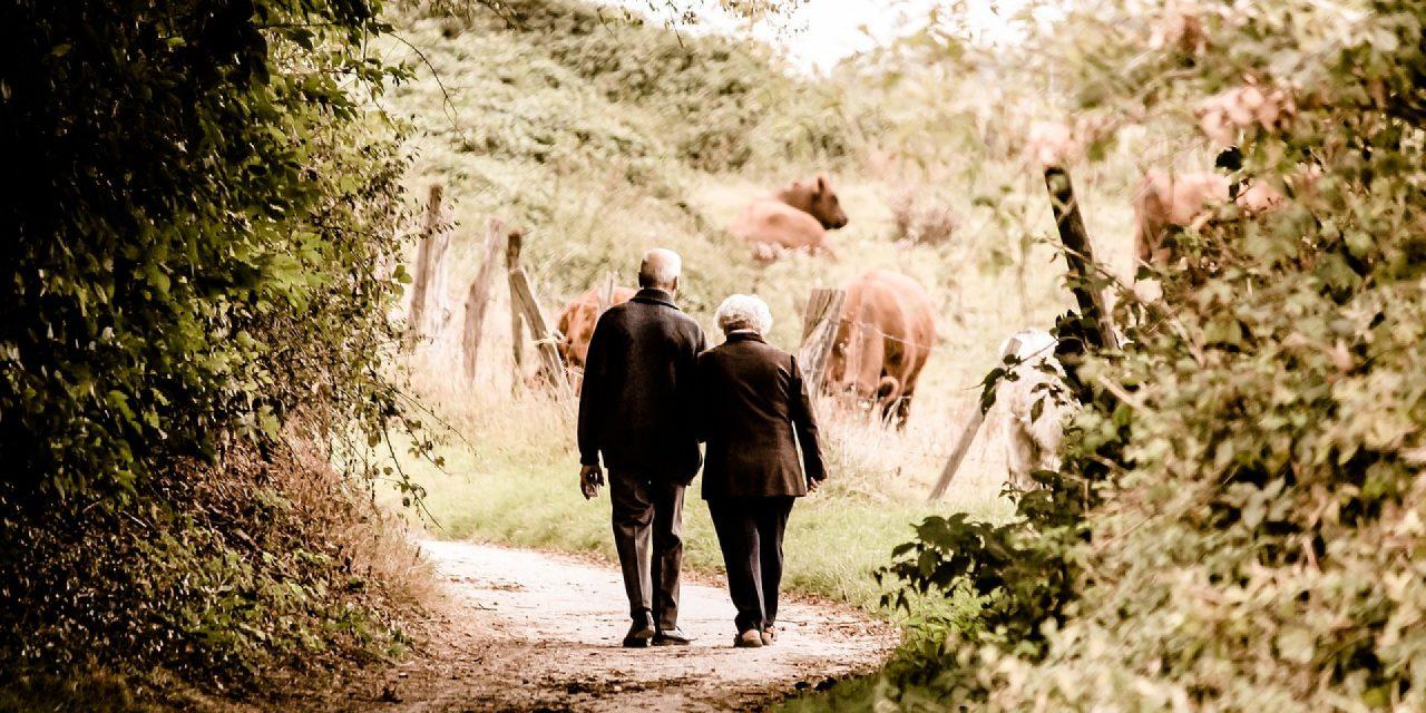 Comment prendre soin des personnes âgées?