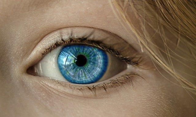 Avantages et inconvénients des lentilles: tout ce que vous devez savoir