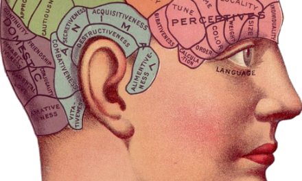 Les différentes spécialités en psychologie